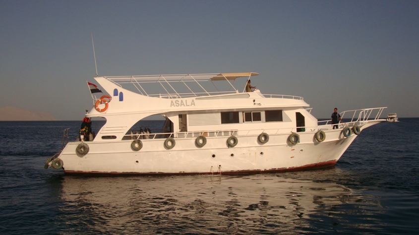 7 Nights B&B with 5 Days / 10 Dives Package: 370€ per person