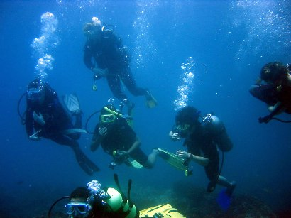 7 Nights B&B with PADI Open Water Course (3-4 Days): 420€ per person